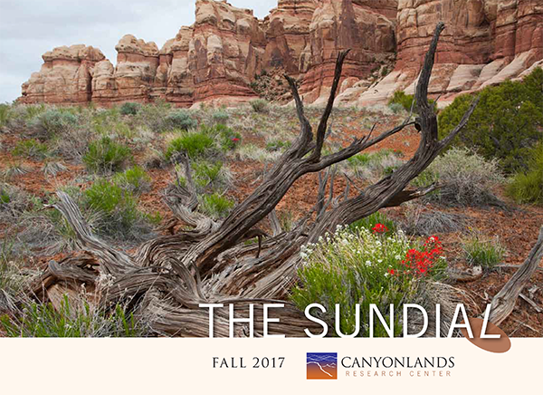 The Sundial Newsletter: Fall 2017